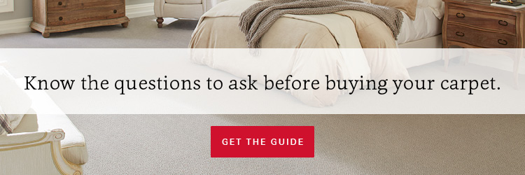 Everything you need to know before you buy carpet