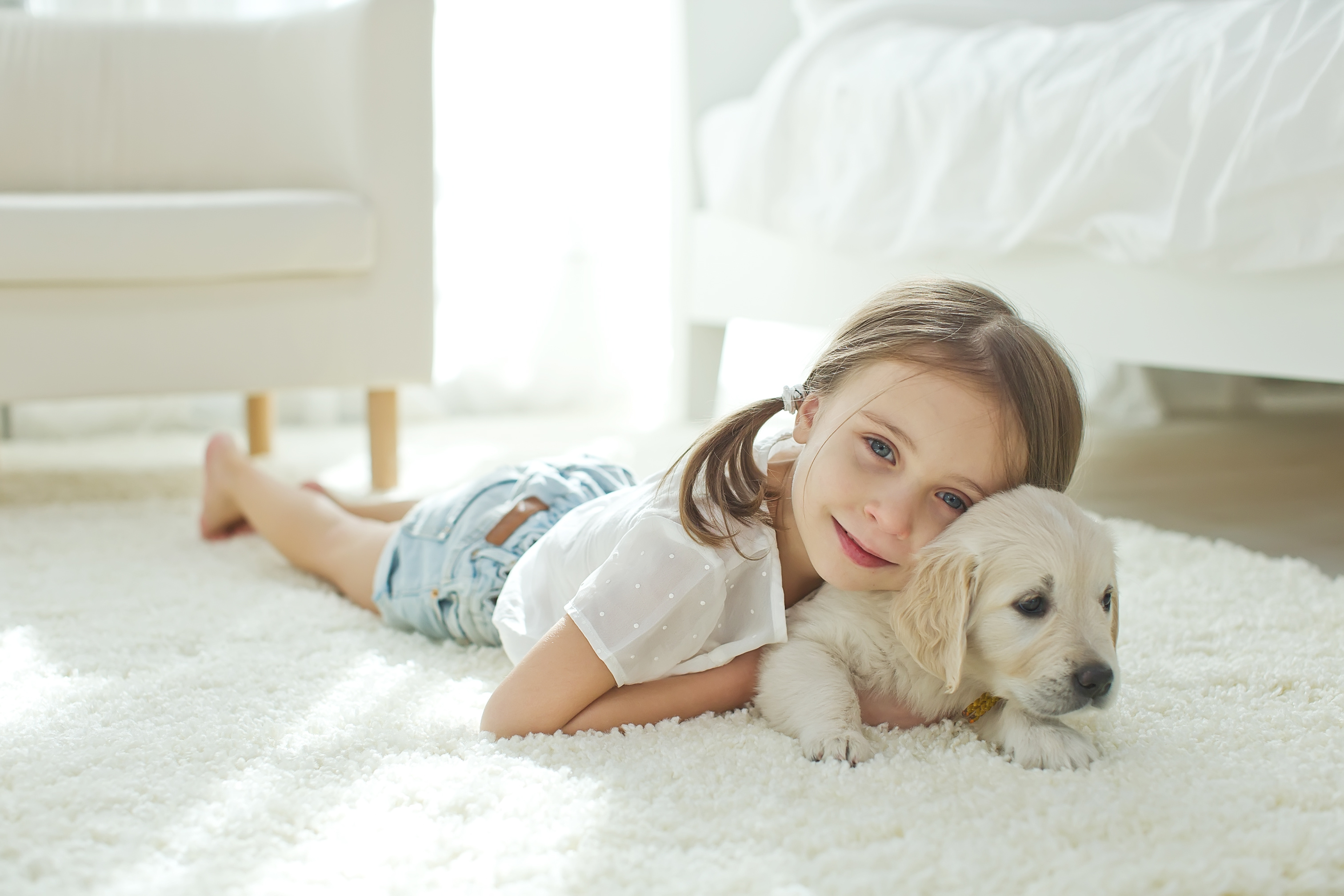 Carpet cleaning in Lincoln, ND from Carpet World