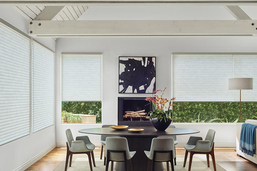 Window treatments in Sherburn, MN from Doolittle's Carpet & Paints