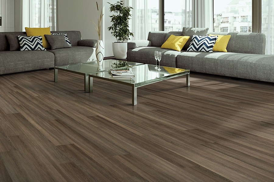 Wood look luxury vinyl plank flooring in Lakewood Ranch, FL from Sarasota Carpet & Flooring