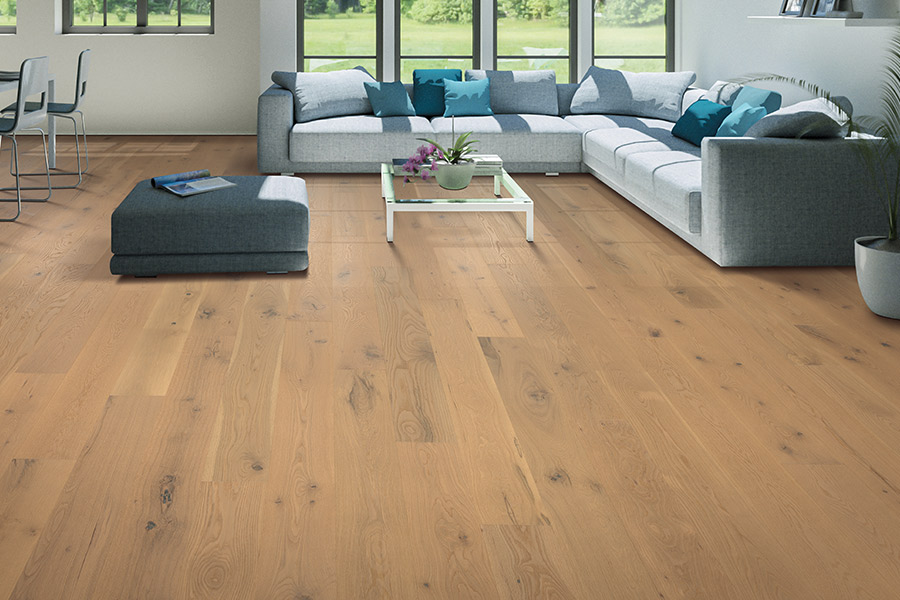 Contemporary wood flooring in St. Paul, MN from zFloors by Zerorez