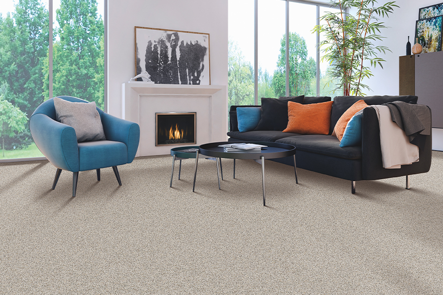 Modern carpeting in Collegeville, PA from A.W. Bergey & Sons Inc.