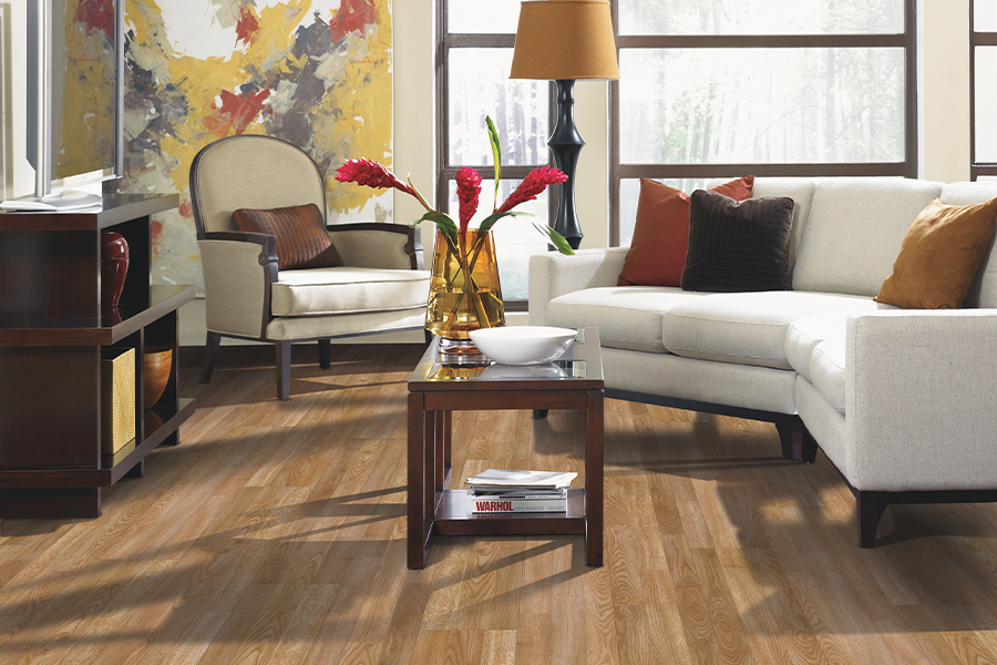 Laminate floor accents in Greer, SC from FLOORS