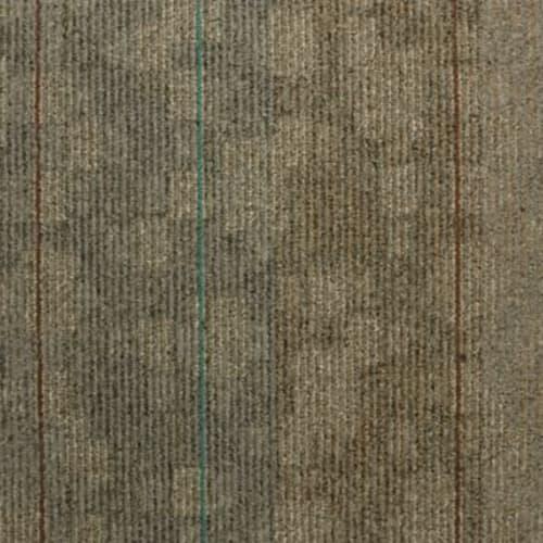 Shop for Carpet in Valdosta, GA from Traditions Flooring