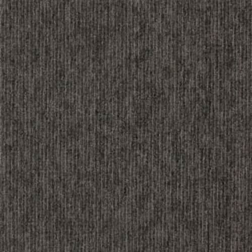 Shop for Carpet in Cedar Grove, WI from Claerbout Furniture & Flooring