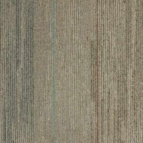 Shop for Carpet in Evansville, IN from Paint & Carpet Depot