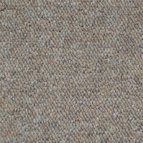 Shop for Carpet in Rural Hall, NC from Professional Carpet Systems