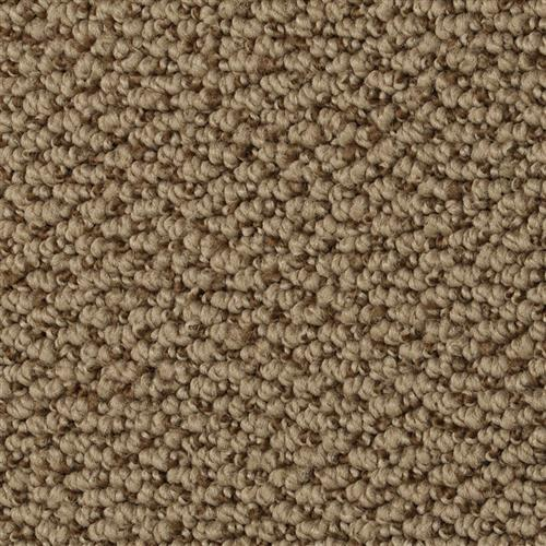 Shop for Carpet in Idaho Falls, ID from Expert Floors