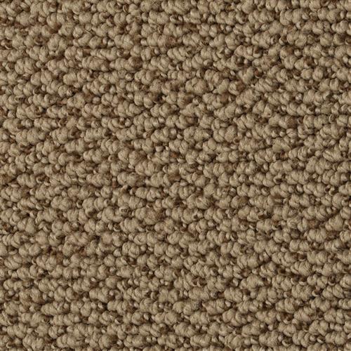 Shop for Carpet in Hazlet, NJ from NJ Carpet Outlet
