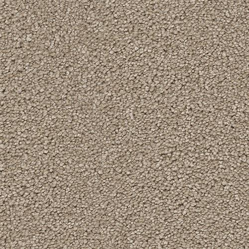 Shop for Carpet in West Fargo, ND from STC Flooring