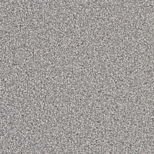 Shop for Carpet in Wytheville, VA from Xterior Plus
