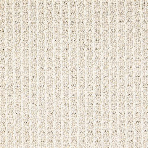 Shop for Carpet in Venice, FL from Showplace Floors