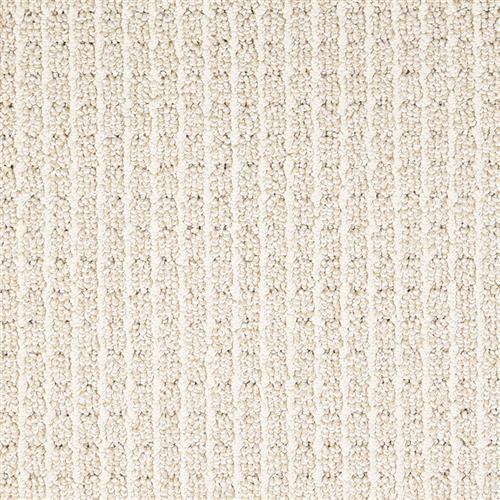 Shop for Carpet in Roanoke, VA from Fashion Floors Roanoke