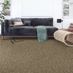 Shop for carpet in Lomita, CA from Carpet Spectrum