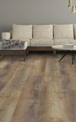 Luxury vinyl flooring in Prairie Grove, AR from King's Floor Covering Inc