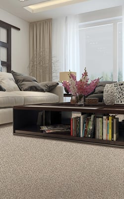 Carpet flooring in Georgetown, TX from Eagle Home Store