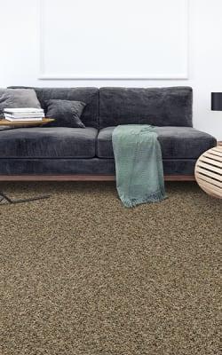 Carpet flooring in Lake St Louis, MO from Barefoot Flooring
