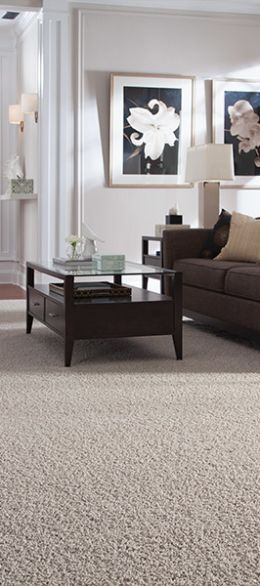 Carpet trends in El Dorado Hills, CA from Floor Store