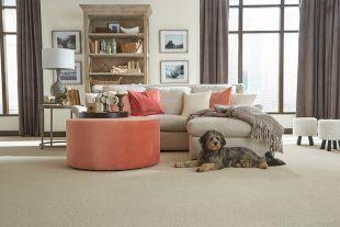 Carpet Flooring Installation in Elk River, MN from Lefebvre's Carpet, LLC