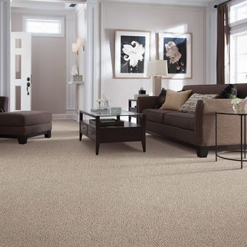 Carpet in Windermere FL from All Floors of Orlando