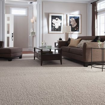Shop for carpet in Belleville, IL from Valor Home Services