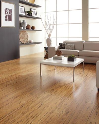 Waterproof flooring in Goshen, AL from Town & Country Flooring Center LLC