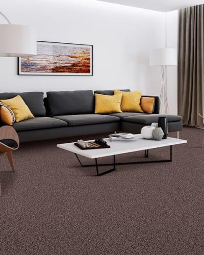 Carpet flooring in Farmington Hills, MI from Pleasant Installs