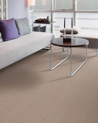 Carpet in Fair Oaks, CA from American River Flooring