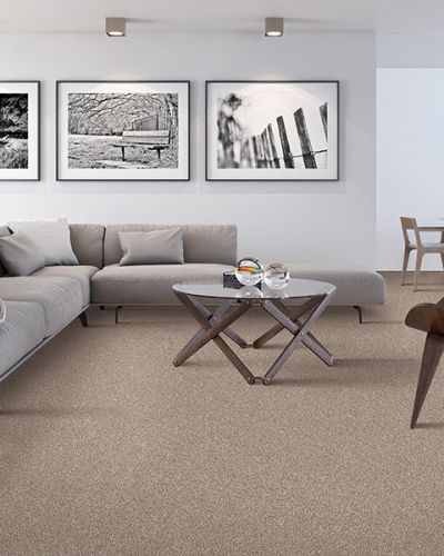 Carpet in San Jose, CA from Conklin Bros. Floor Coverings