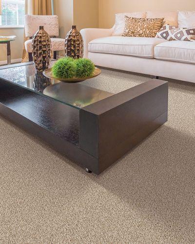 Carpet in Grass Valley, CA from Premier Flooring Center