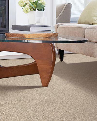 Carpet in Warner Robins GA from H & H Carpets