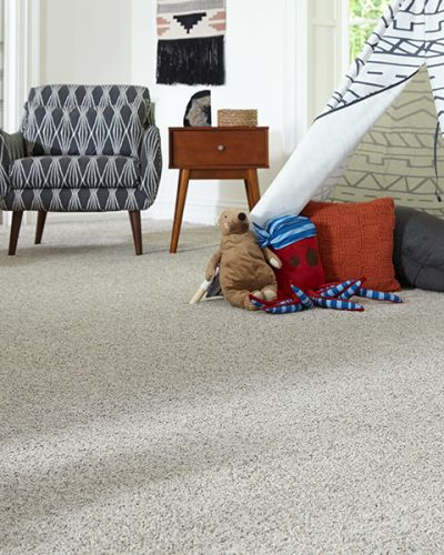 Carpet in Macomb, MI from Carpet Guys
