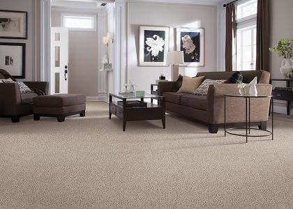 Shop for carpet in Roswell, GA from Select Floors