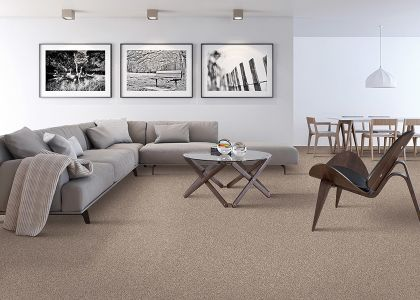 Shop for carpet in Bristol, PA from Room by Room Design Center