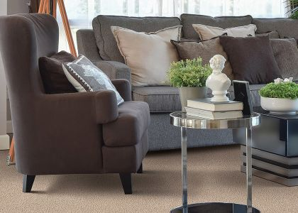 Shop for carpet in Ross, OH from Chillicothe Carpet