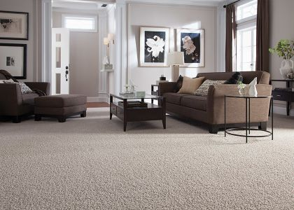 Shop for carpet in Sarasota, FL from Your Flooring Warehouse