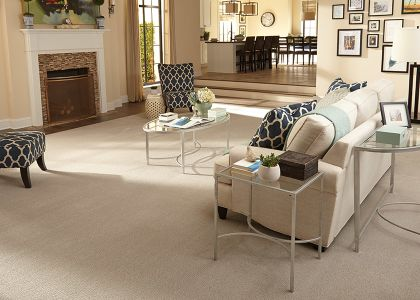 Shop for carpet in Harrisburg, PA from Harrisburg Wall & Flooring
