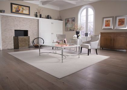 Learn about area rugs in