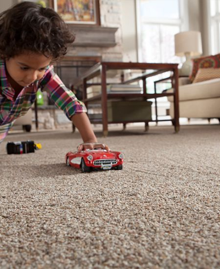 Carpet trends in Palm Harbor FL from RCI Flooring