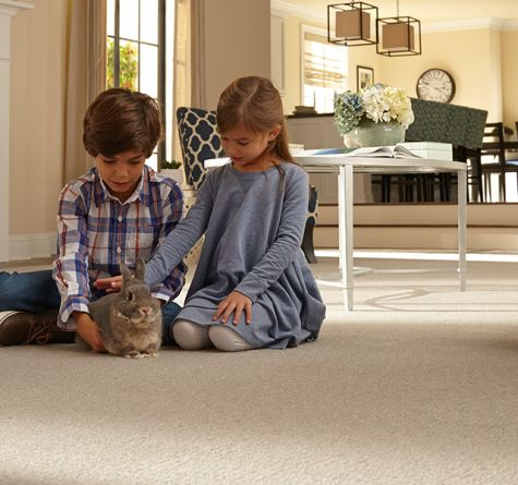 Carpet Specials from Capitol Carpet & Tile