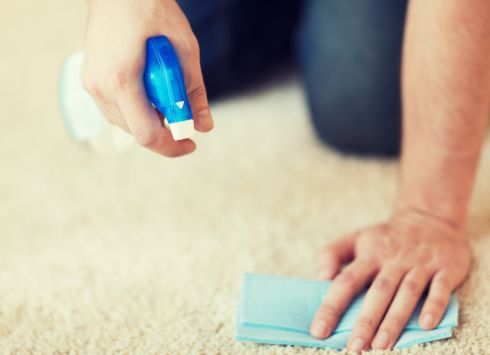 Carpet Cleaning services in Athens, GA