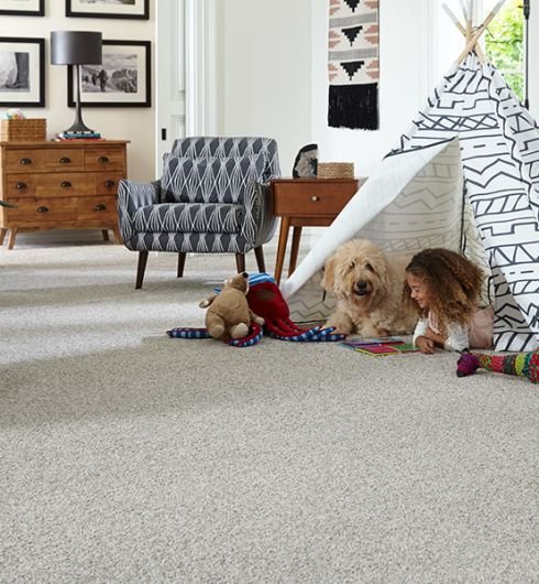 Luxury carpet in Springfield, PA from Pandolfi House of Carpets & Flooring
