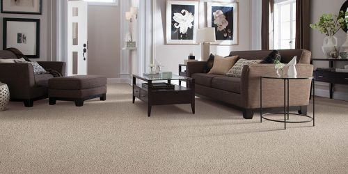 Carpet in Murfreesboro, TN from Freds Flooring Services