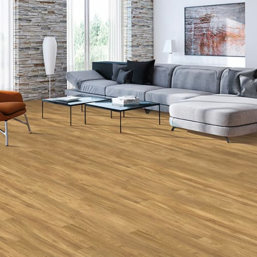 Luxury vinyl flooring in High Point, NC from Professional Carpet Systems