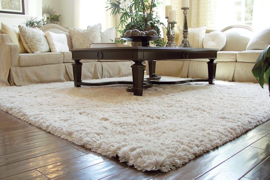 Durable area rug in Port Washington, NY from Anthony's World of Floors