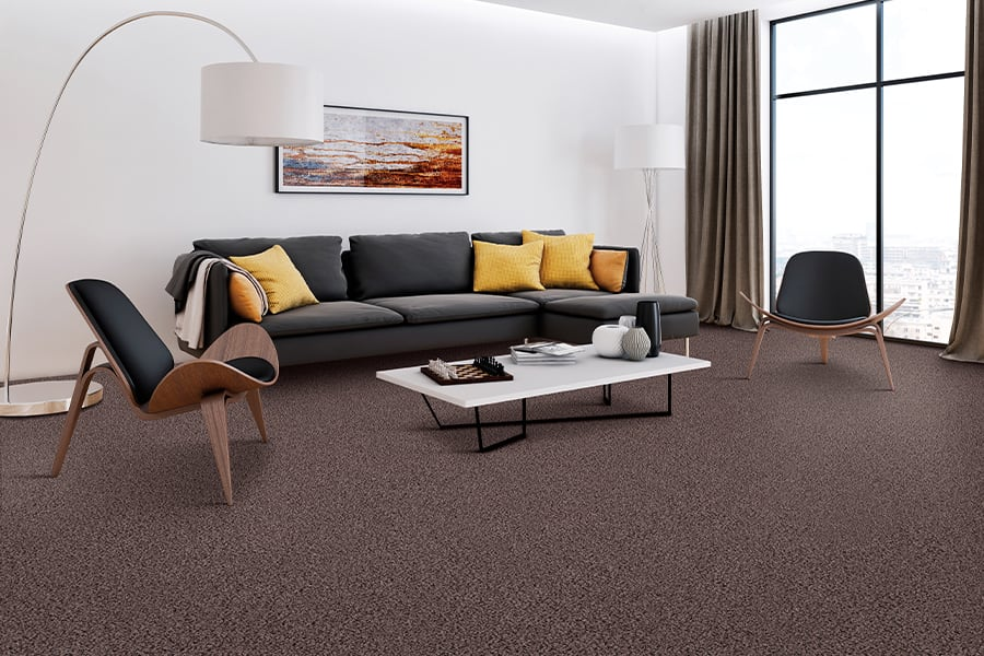 Contemporary carpet in Palmyra, PA from Weaver's Carpet & Tile