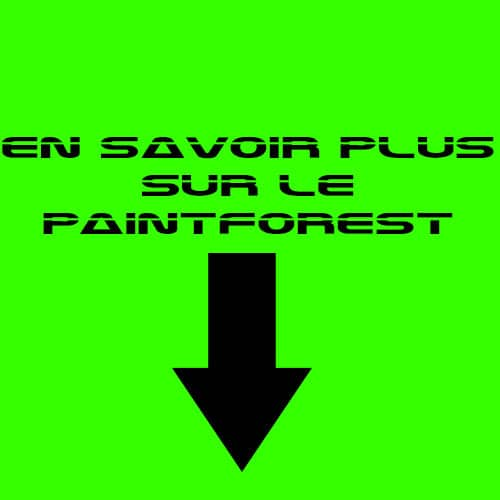 en-savoir-plus-paintball-forest