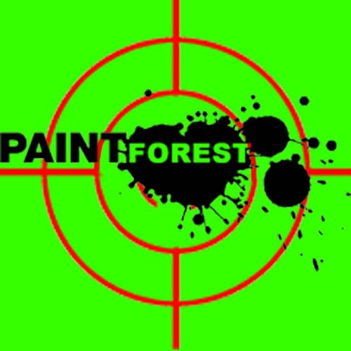 logo-paintforest