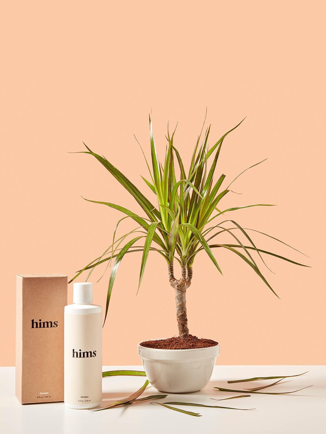 A plant with its leaves falling off beside Hims products