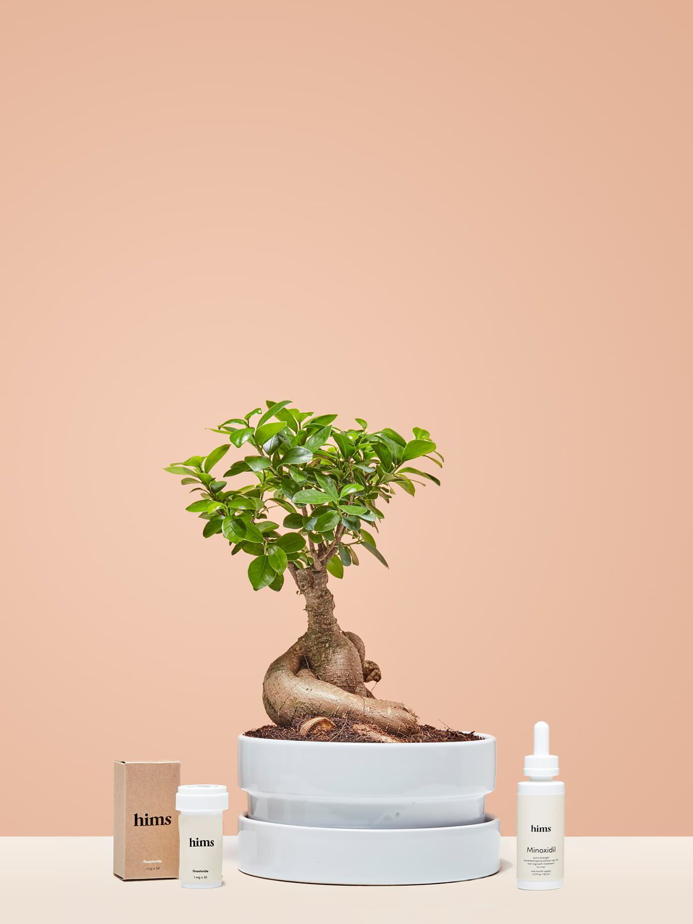 Bonsai tree with falling leaves